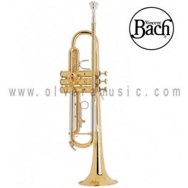 Bach TR200 Trompeta Intermedia Step-Up